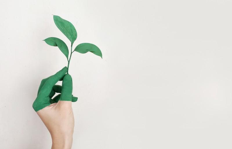 Оценка на въздействието върху околната среда